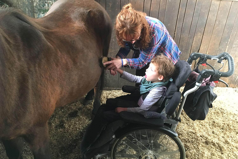 Mädchen im Rollstuhl am Pferd
