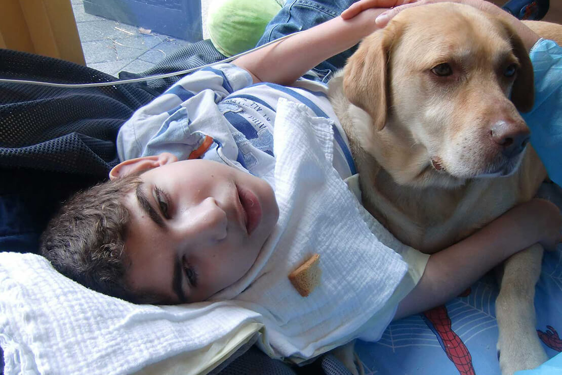 A dog lies in the arms of a boy